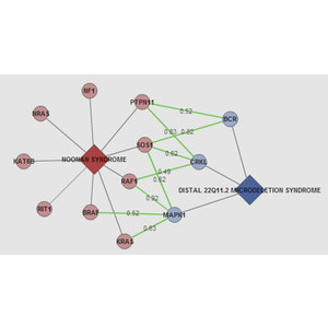 ODCs - Connections between rare diseases through shared genes and protein interactions